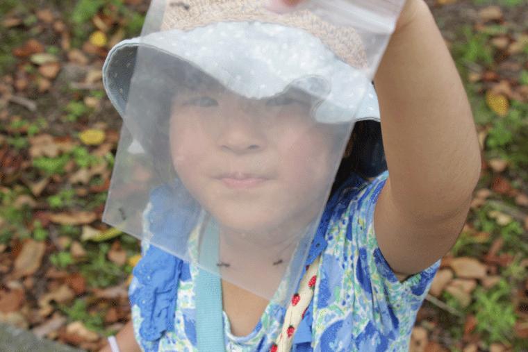 アリを見つけた女の子