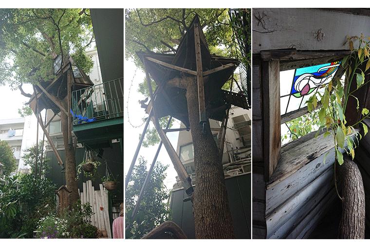 白金台のセレクトショップ&カフェ「BIOTOP」に併設した小林さんが制作したツリーハウス