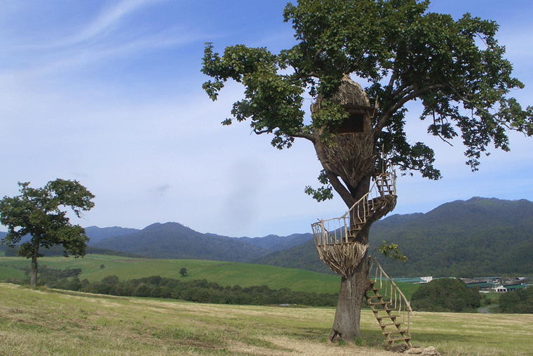 北海道・ナイタイ高原牧場のツリーハウス
