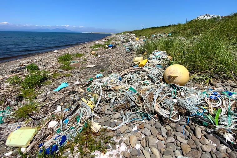プラスチックごみが大量に打ち上げられている砂浜の写真